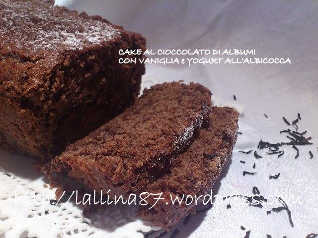 cake al cioccolato yogurt albicocca (8)