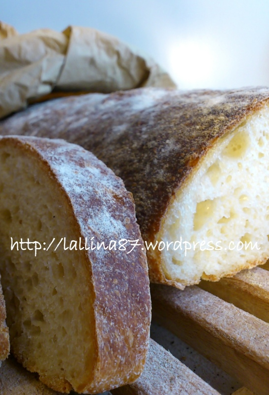 ciabattone lunghissima lievitazione 3 farine (10)