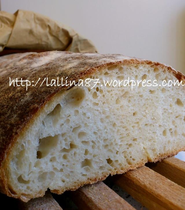 ciabattone lunghissima lievitazione 3 farine (9)