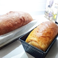 Pan bauletto o pane da sandwich con licolì e ldb